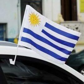bandera-para-auto-2